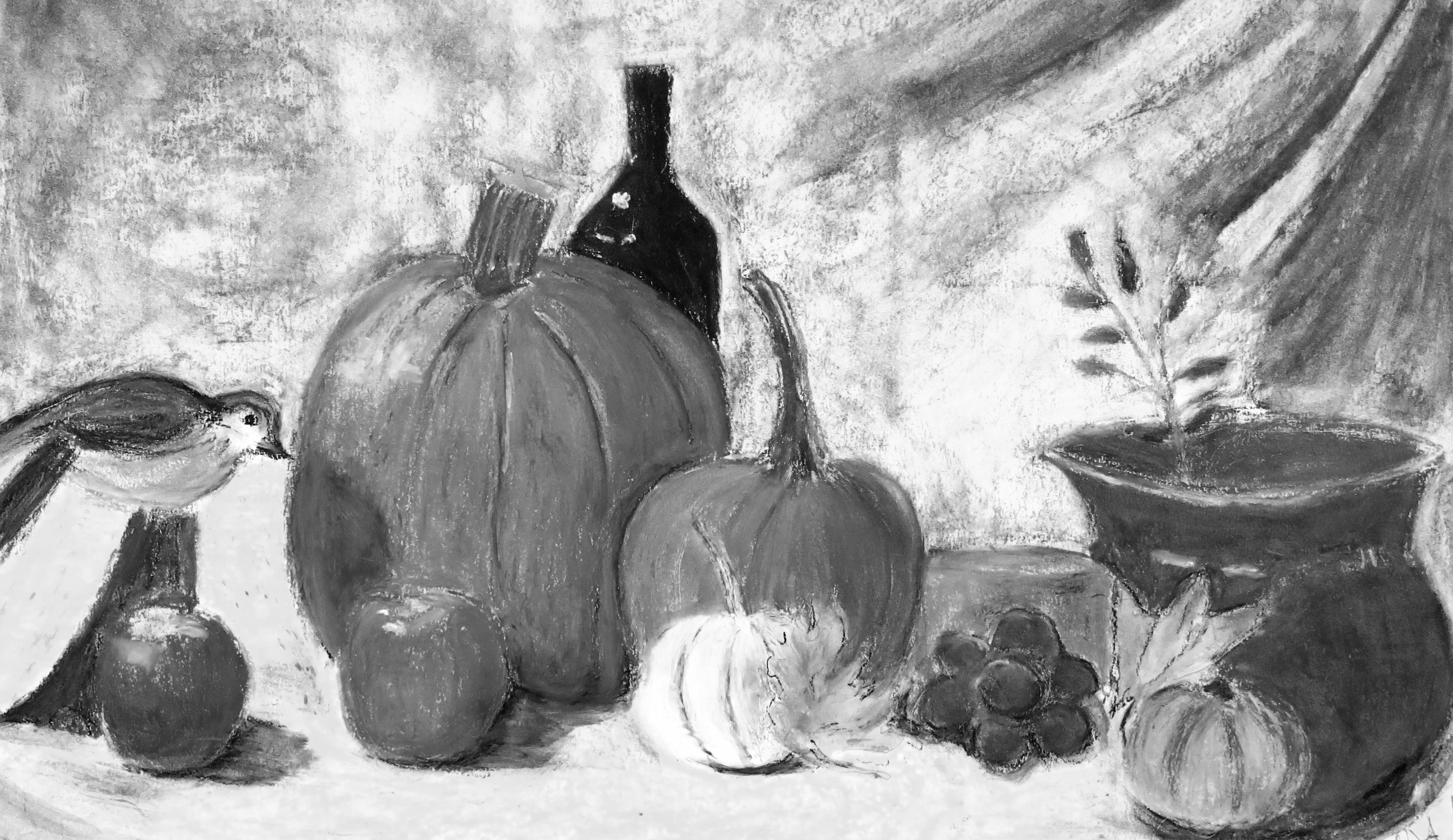 Beginner's Observational Drawing w/Lisa Granata (Adults 17+)