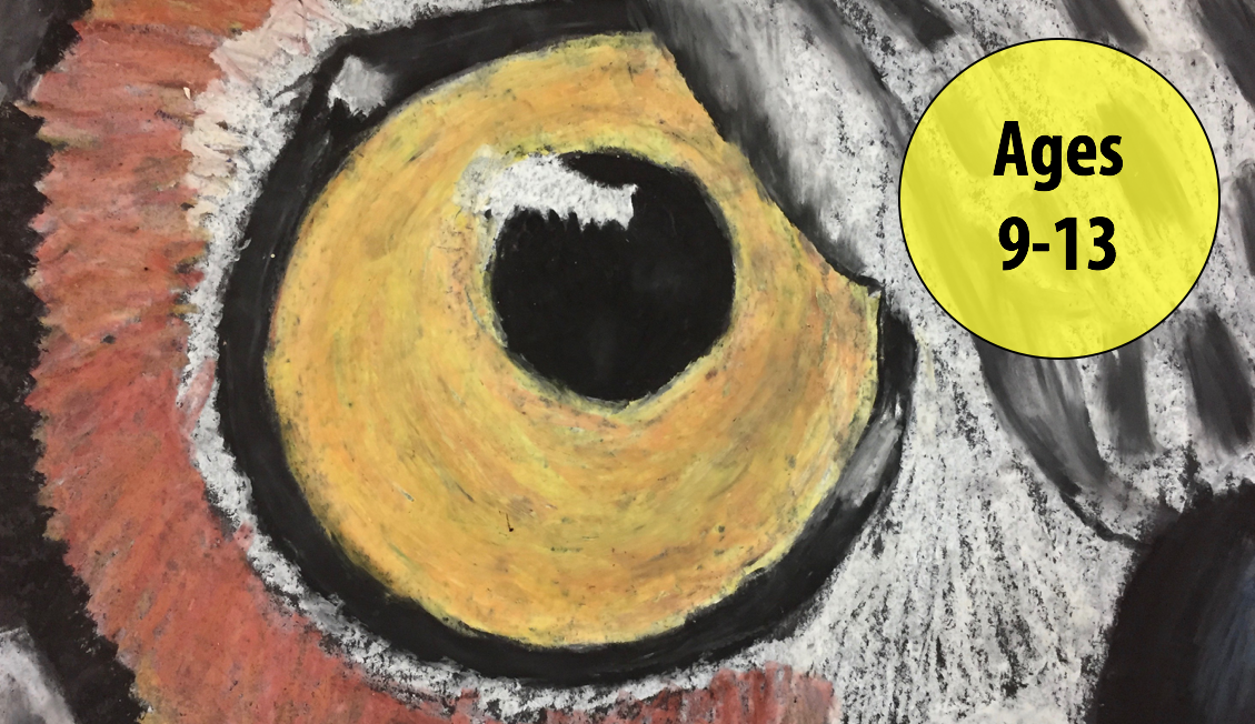 Summer Art Week 3: July 16-20, Oil Pastels/Cartooning (Ages 9-13)