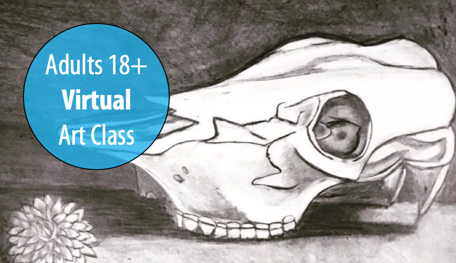 NEW! Charcoal Drawing from Observation w/Lisa Granata For Adults 18+ (Virtual)